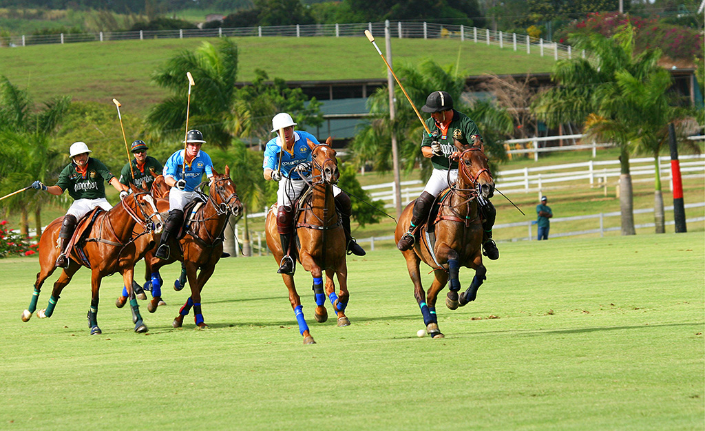 POLO ACTION